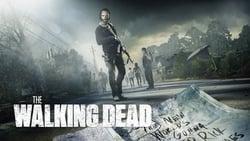 Poster de la Serie The Walking Dead en linea