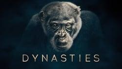 Posters Serie Dinastías en linea