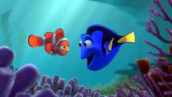 Nuevo trailer online Pelicula Buscando a Nemo