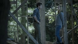 Nuevo Trailer de Ozark serie online