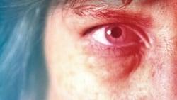 Vision de Destroyer. Una mujer herida pelicula online