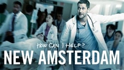 Posters Serie New Amsterdam en linea