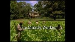 Visionar The Miracle Worker peli online
