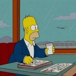 I Simpson Season 19
