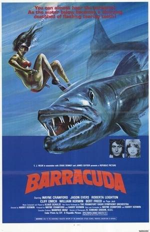 Barracuda 1978