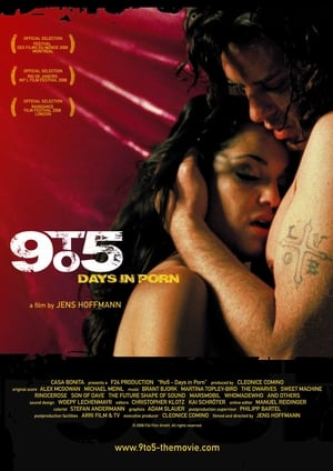 9to5: Days in Porn 2008