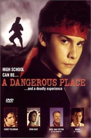 A Dangerous Place 1995