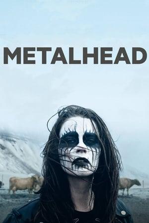 Metalhead 2013