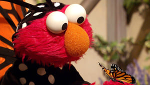 Backdrop image for Elmo's Butterfly Friend