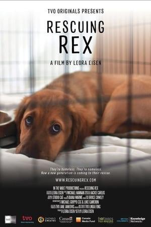 Rescuing Rex (2020)