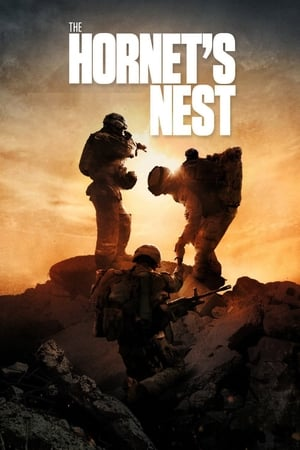 The Hornet's Nest 2014