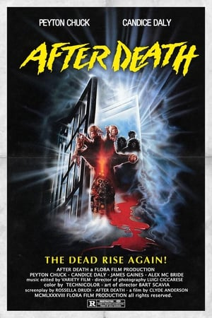 After Death 1990