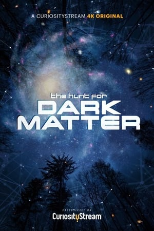 The Hunt for Dark Matter 2017