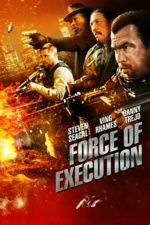 Force of Execution 2013