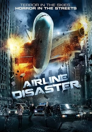 Airline Disaster 2010