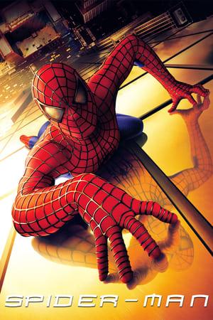 Spider-Man (2002) image