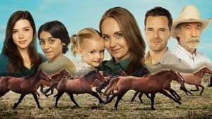 Heartland: Season 14 Episode 3