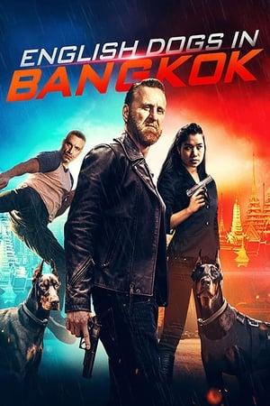 English Dogs in Bangkok