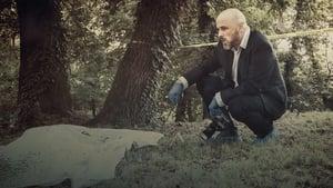 The Case That Haunts Me: Season 3 Episode 5