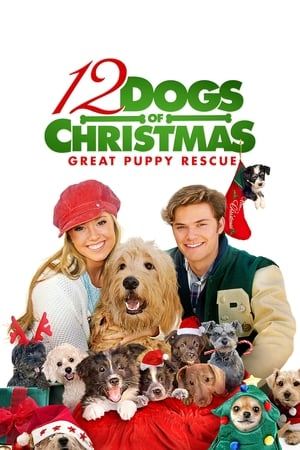 12 Dogs of Christmas: Great Puppy Rescue 2012