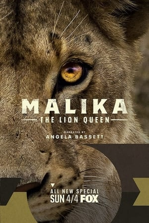 Malika the Lion Queen 2021