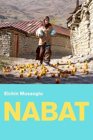 Nabat 2014
