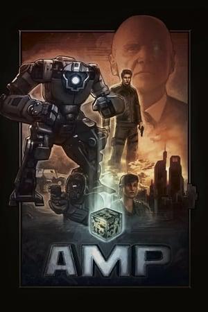 AMP 2013