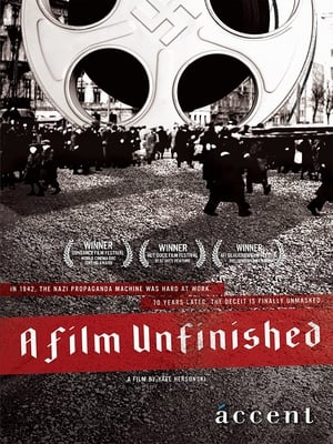 A Film Unfinished 2010
