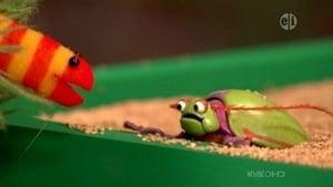 Backdrop image for Slimey Adopts a Pet Bug