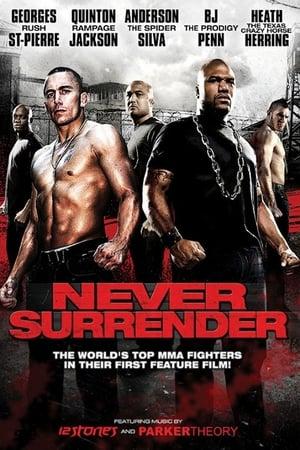 Never Surrender (2009)