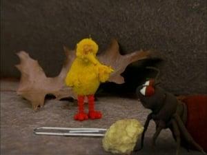 Backdrop image for Adventures of Little Big Bird (Part 1)