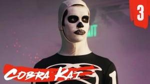 S1-E3: Esqueleto