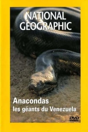National Geographic : Anacondas, Les Géants Du Vénézuela