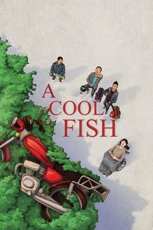 A Cool Fish 2018