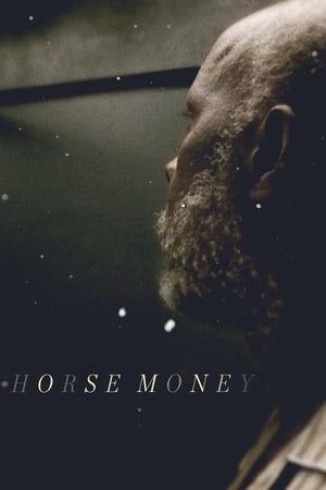 Horse Money 2014