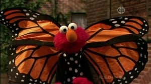 Backdrop image for Elmo and the Butterfly