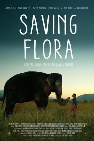 Baixar Saving Flora (2019) Dublado via Torrent