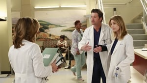 Greys Anatomy 9×8