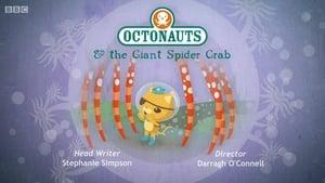 The Octonauts: 1×50
