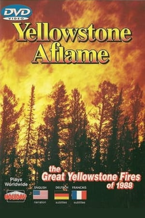 Yellowstone Aflame (1989)
