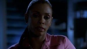 CSI: Kryminalne zagadki Miami: s1e15
