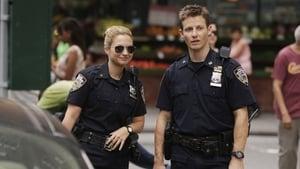 Blue Bloods (Familia de policías) - Temporada 5