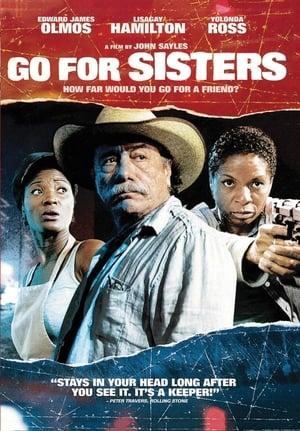 Go for Sisters-LisaGay Hamilton