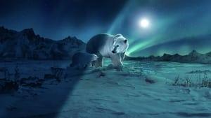 Planeta nocturno: a todo color