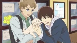 Sanrio Boys: 1×1