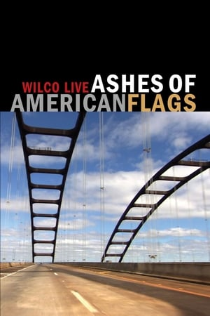 Wilco: Ashes of American Flags