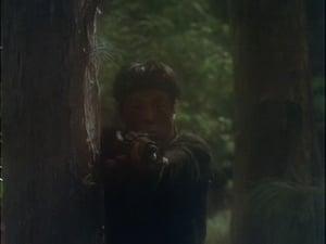 Magnum - Temporada 2