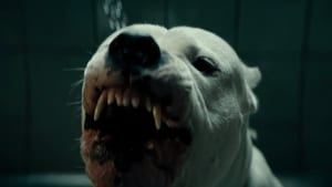 Watch Dogman 2018 HD Movie