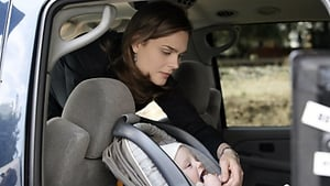 Bones - Baby in the Bough episodio 12 online