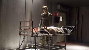 Dexter: S01E12